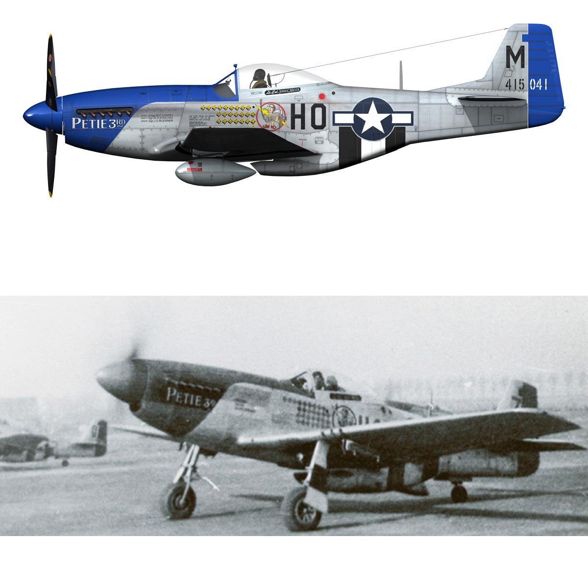 north american p-51d mustang – petie 3rd 3d model fbx c4d lwo obj 280144