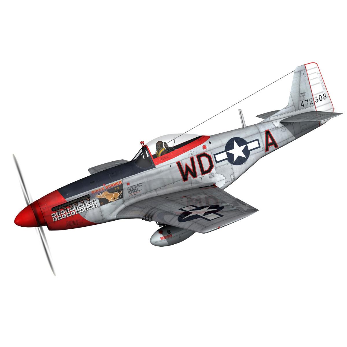 north american p-51d – ridge runner iii 3d model fbx c4d lwo obj 282364