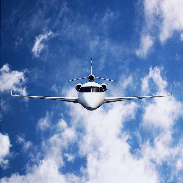 lowpoly dassault falcon 8x private jet 3d model 3ds fbx blend dae lwo obj 288071