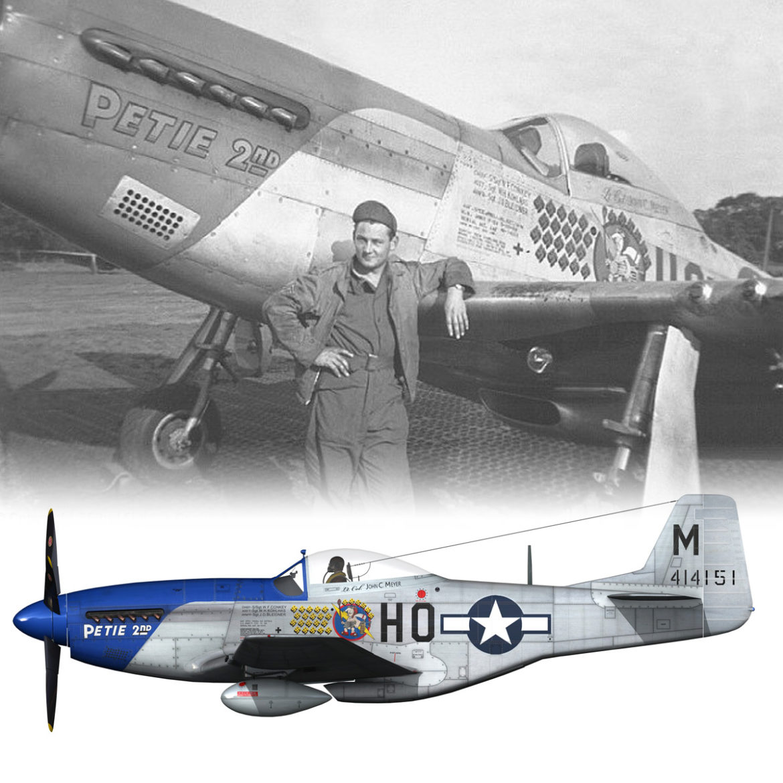 north american p-51d mustang – petie 2nd 3d model fbx c4d lwo obj 295734
