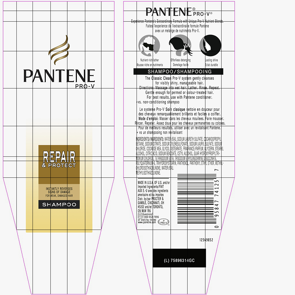 pantene shampoo bottle 3d model max fbx ma mb obj 298454