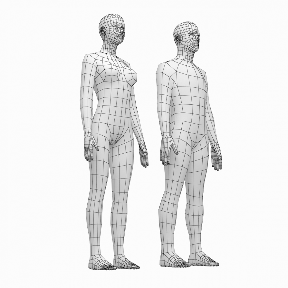 female and male deailed base mesh in rest pose 3d model 3ds max dxf dwg fbx c4d dae ma mb  obj 301288