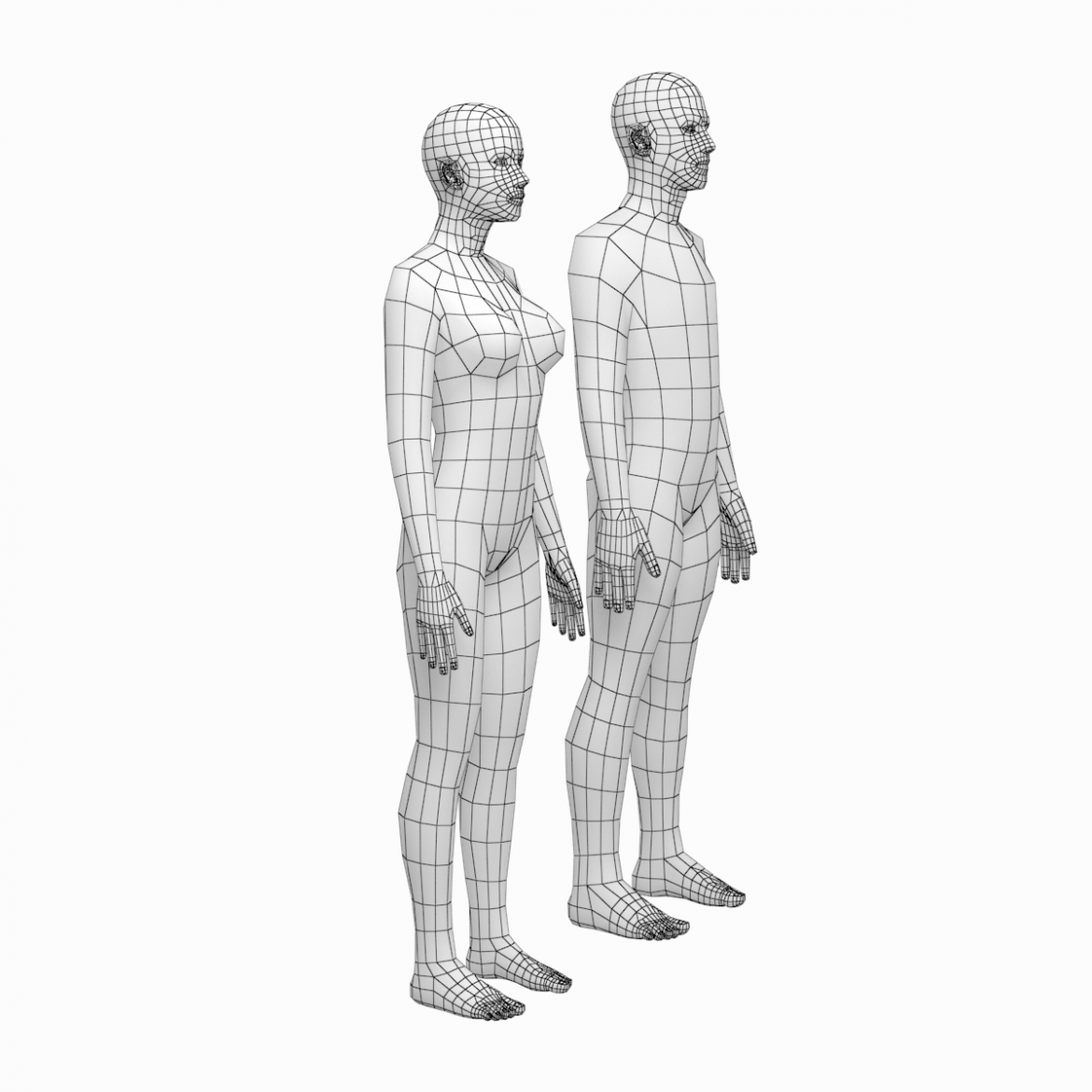 female and male deailed base mesh in rest pose 3d model 3ds max dxf dwg fbx c4d dae ma mb  obj 301289