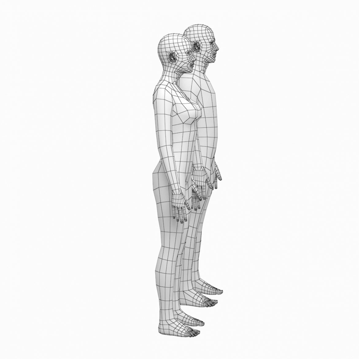 female and male deailed base mesh in rest pose 3d model 3ds max dxf dwg fbx c4d dae ma mb  obj 301290