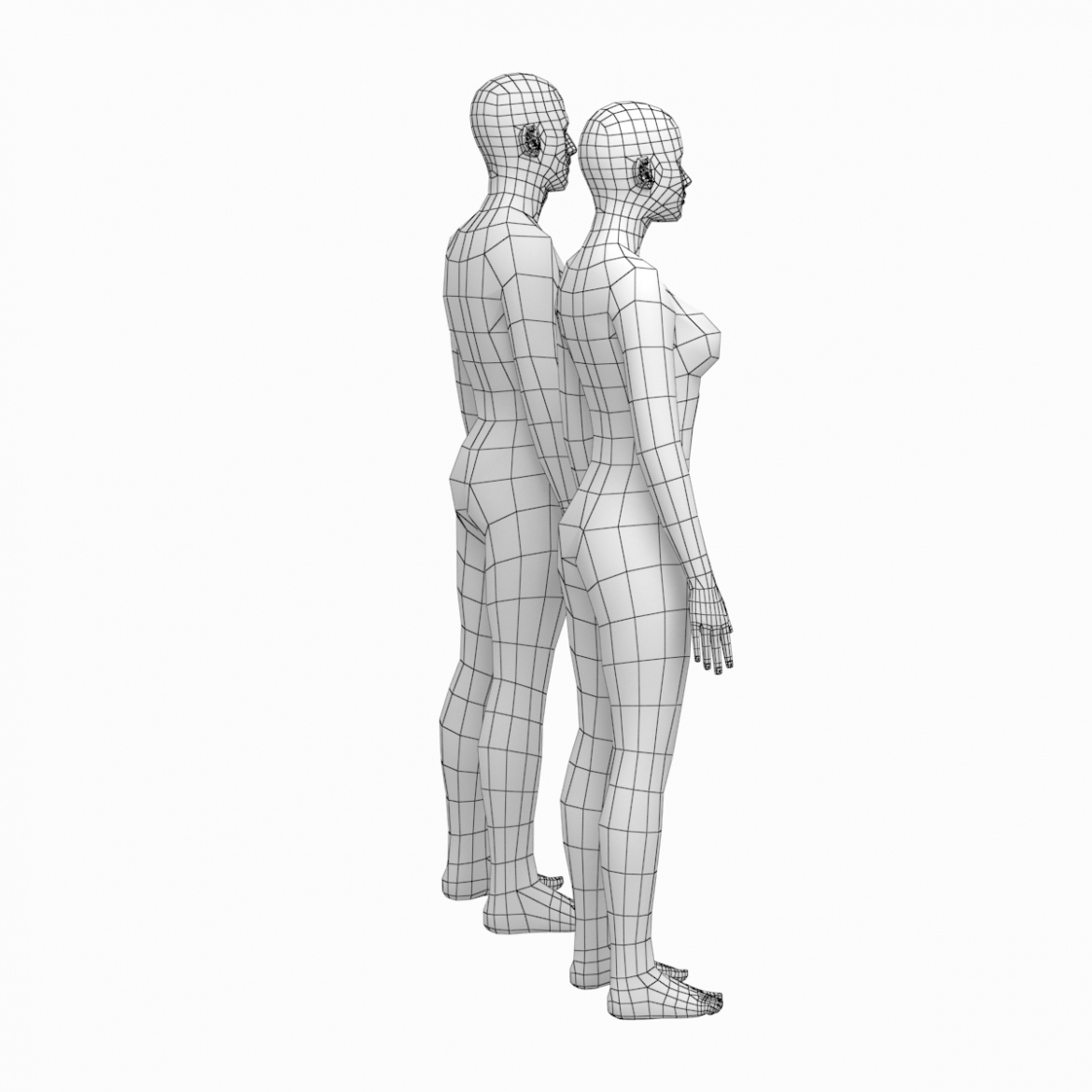 female and male deailed base mesh in rest pose 3d model 3ds max dxf dwg fbx c4d dae ma mb  obj 301291