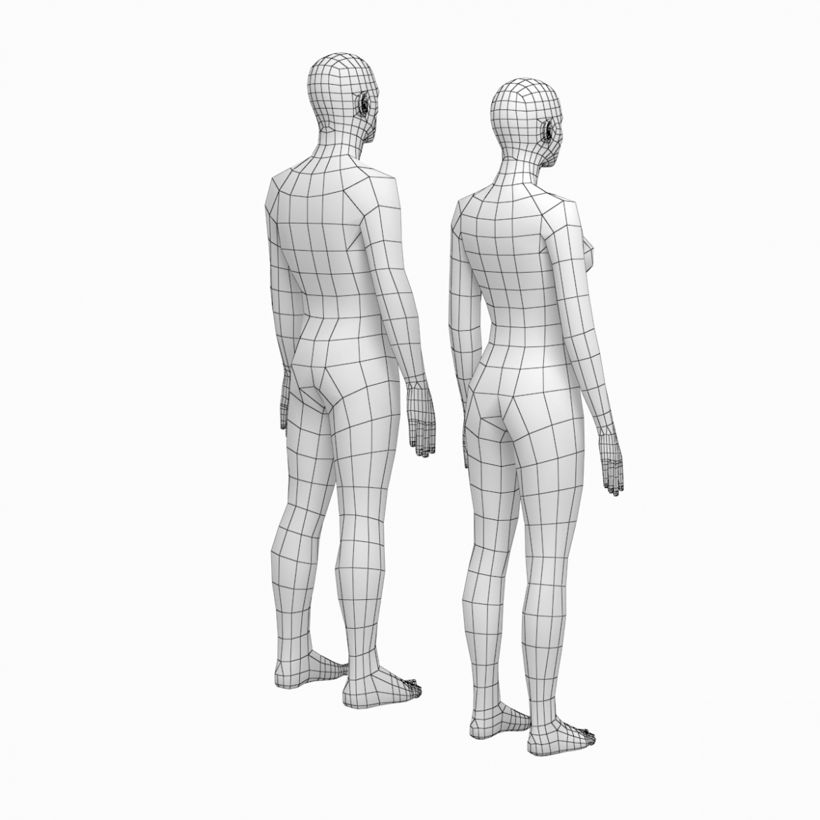female and male deailed base mesh in rest pose 3d model 3ds max dxf dwg fbx c4d dae ma mb  obj 301292
