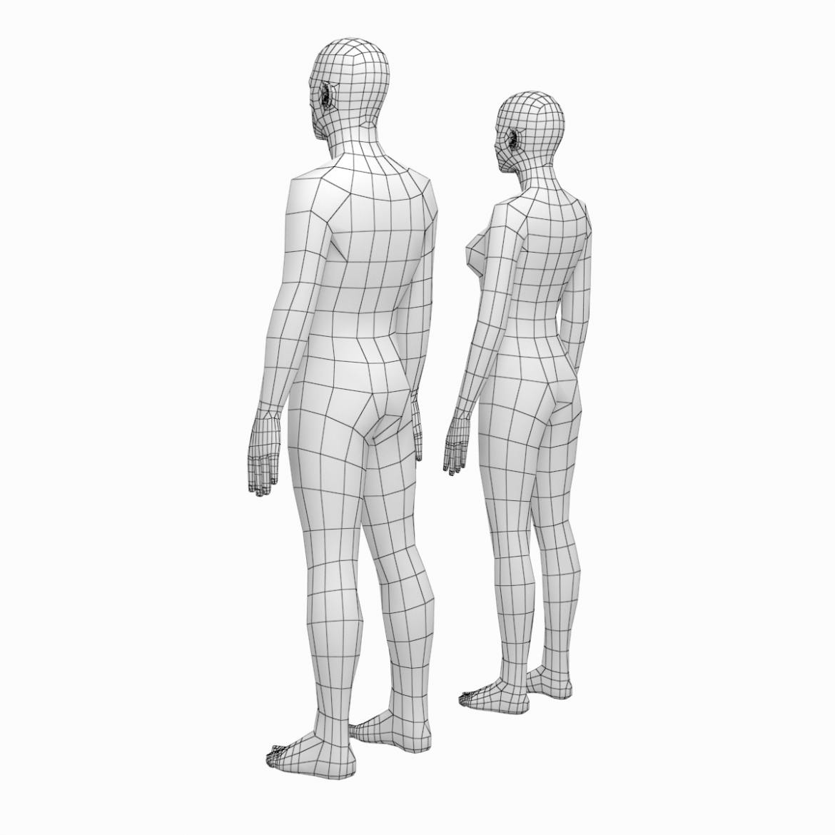 female and male deailed base mesh in rest pose 3d model 3ds max dxf dwg fbx c4d dae ma mb  obj 301293