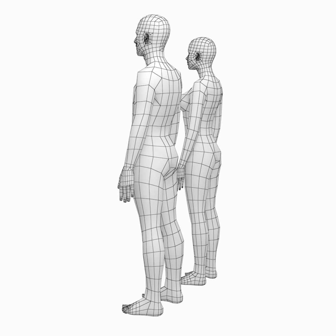 female and male deailed base mesh in rest pose 3d model 3ds max dxf dwg fbx c4d dae ma mb  obj 301294