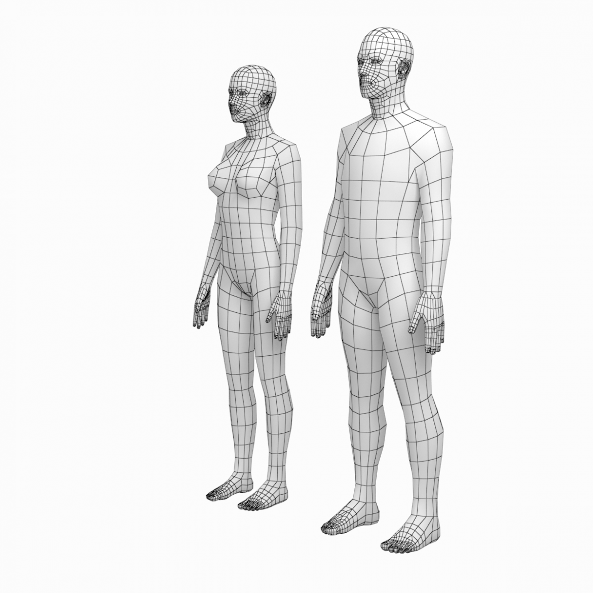female and male deailed base mesh in rest pose 3d model 3ds max dxf dwg fbx c4d dae ma mb  obj 301296