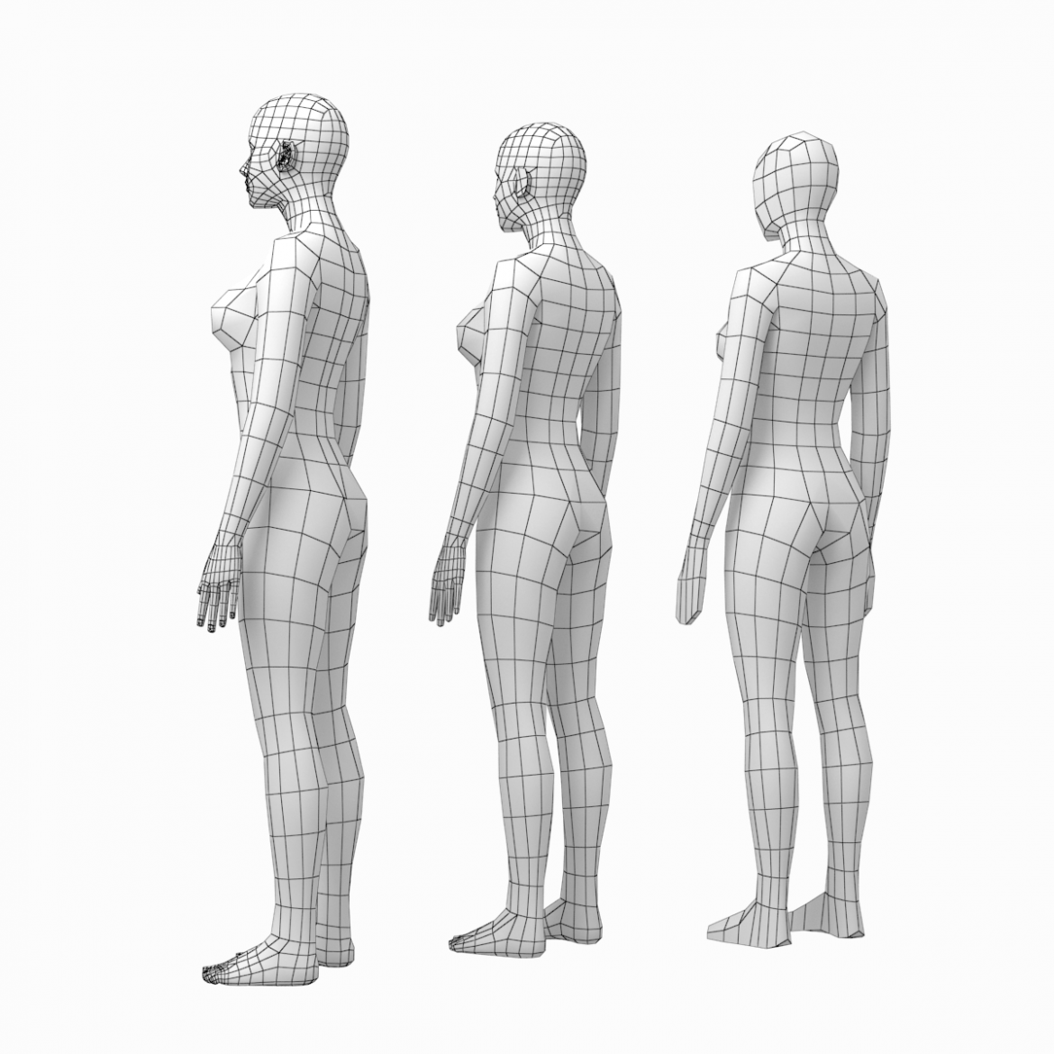 female and male base mesh in rest pose bundle 3d model 3ds max dxf dwg fbx c4d dae ma mb  obj 301324