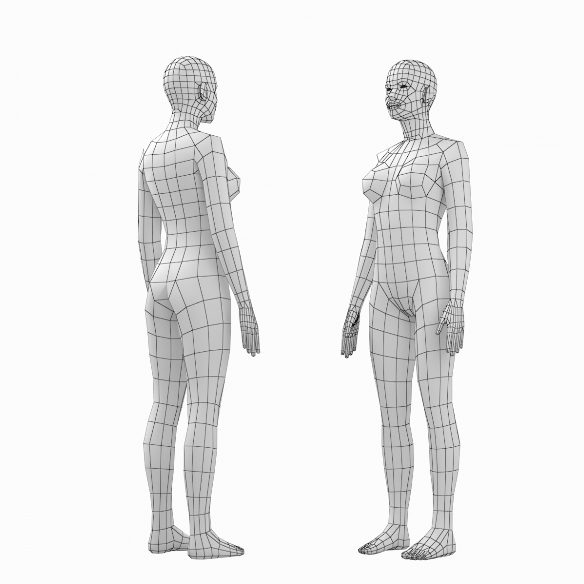 female and male base mesh in rest pose bundle 3d model 3ds max dxf dwg fbx c4d dae ma mb  obj 301328