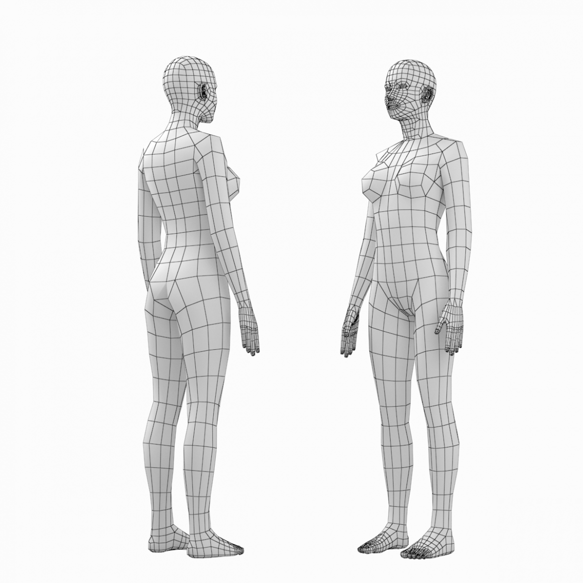 female and male base mesh in rest pose bundle 3d model 3ds max dxf dwg fbx c4d dae ma mb  obj 301329