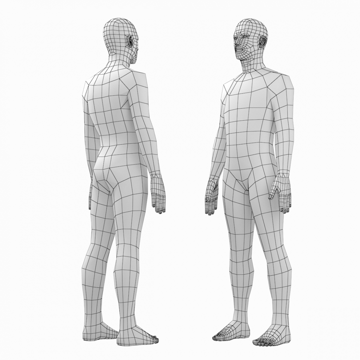 female and male base mesh in rest pose bundle 3d model 3ds max dxf dwg fbx c4d dae ma mb  obj 301332