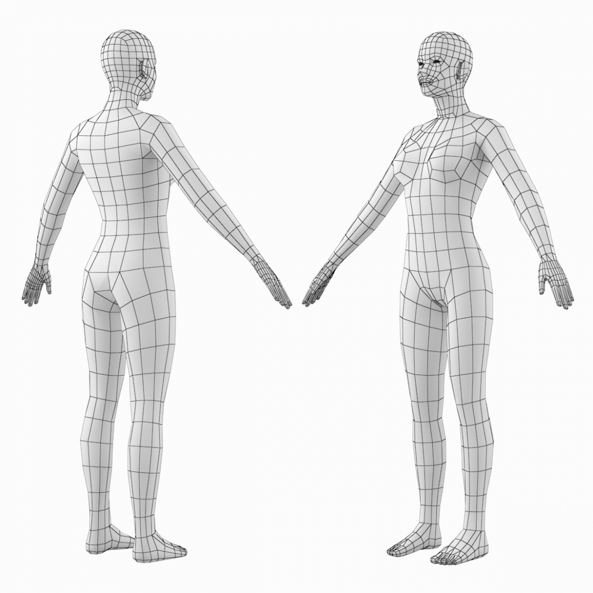 female base mesh natural proportions in a-pose 3d model 3ds max dxf dwg fbx c4d dae ma mb  obj 301363
