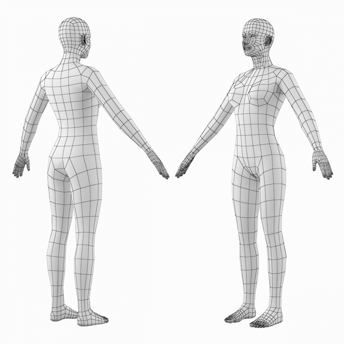 female base mesh natural proportions in a-pose 3d model 3ds max dxf dwg fbx c4d dae ma mb  obj 301364