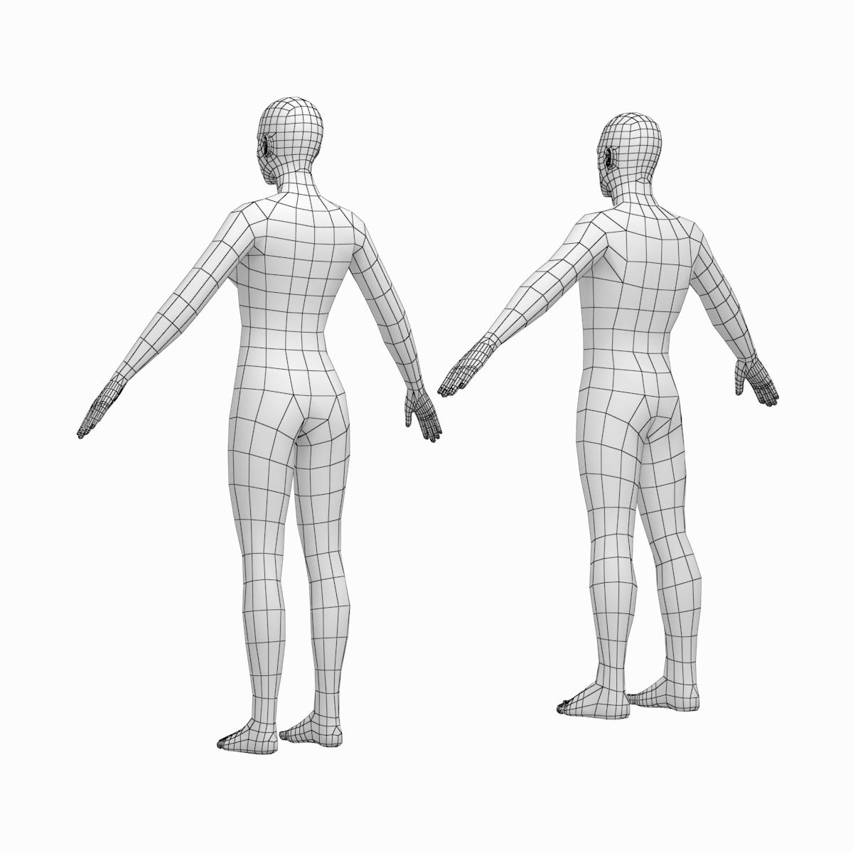 Female And Male Base Mesh In A Pose