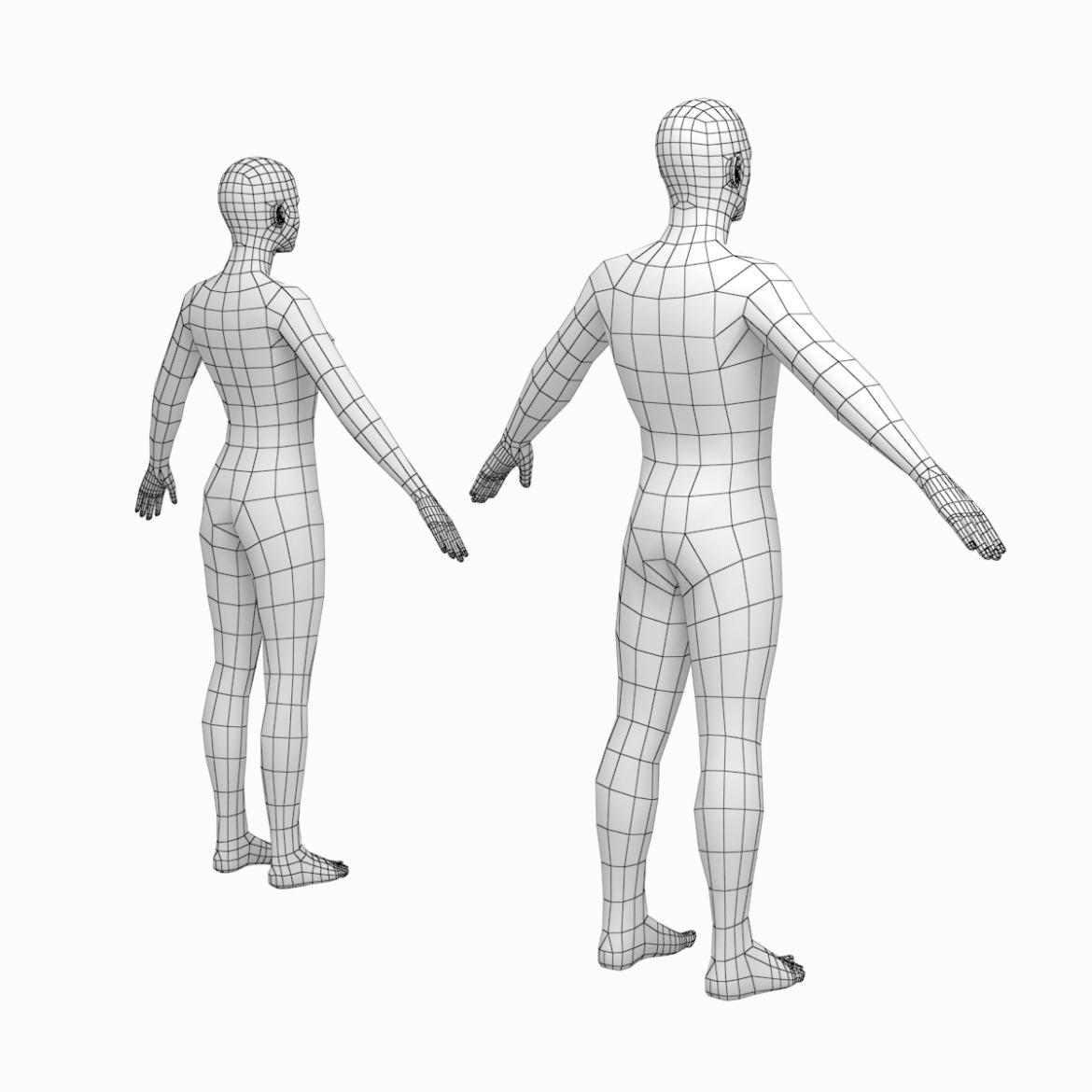 female and male base mesh in a-pose 3d model 3ds max dxf dwg fbx c4d dae ma mb  obj 301396