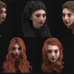 long female hair 10 species low-poly 3d models 3d model 3ds max obj 302146