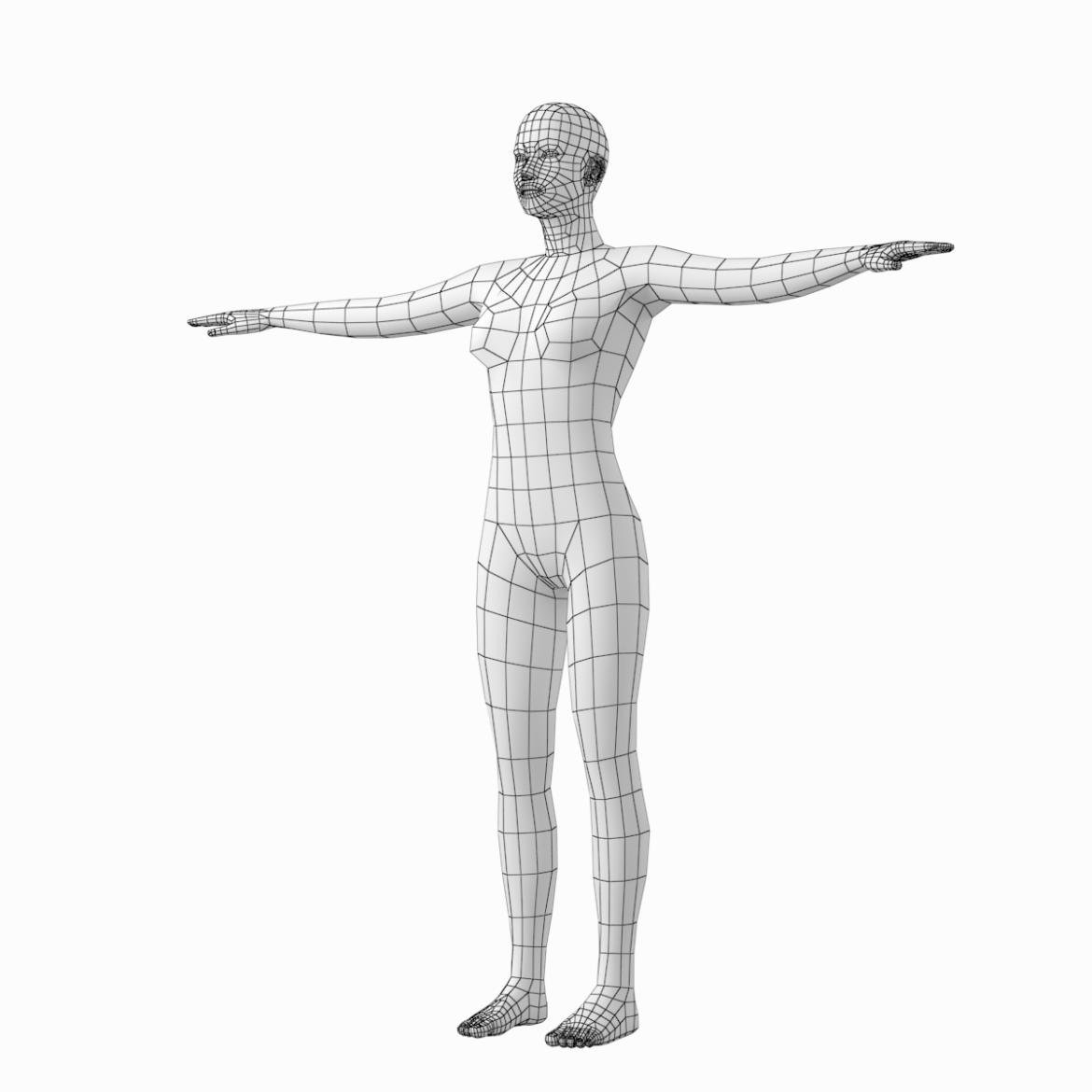 male and female base mesh in t-pose 3d model png stl obj ma mb max fbx dxf dwg dae c4d 3ds txt 305184