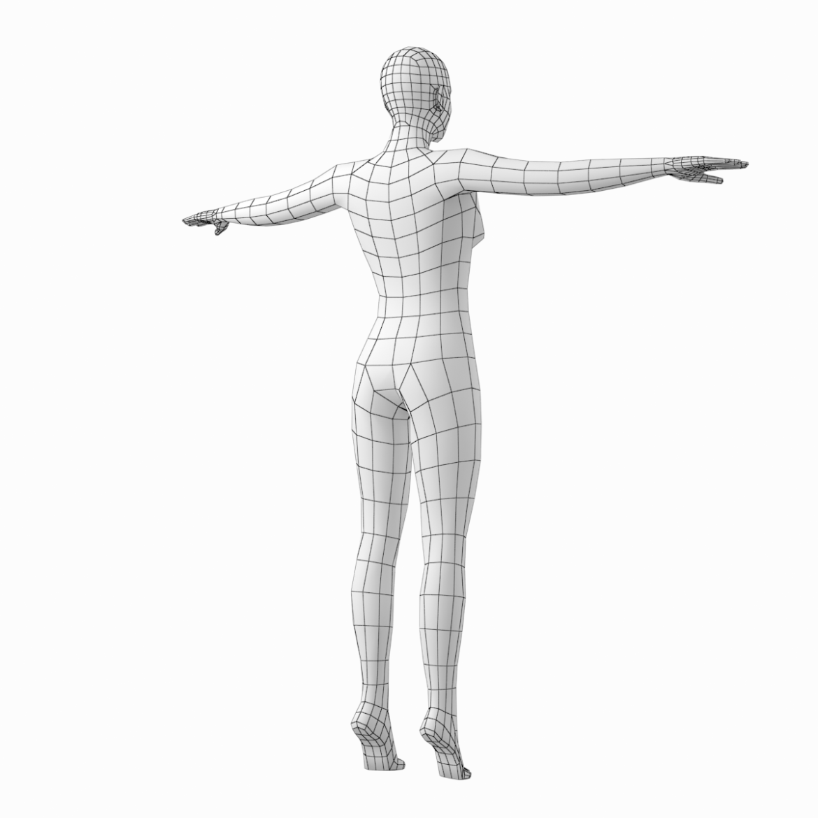 female body on toes base mesh in t-pose 3d model txt 3ds c4d dae dwg dxf fbx max ma mb obj stl png 305210