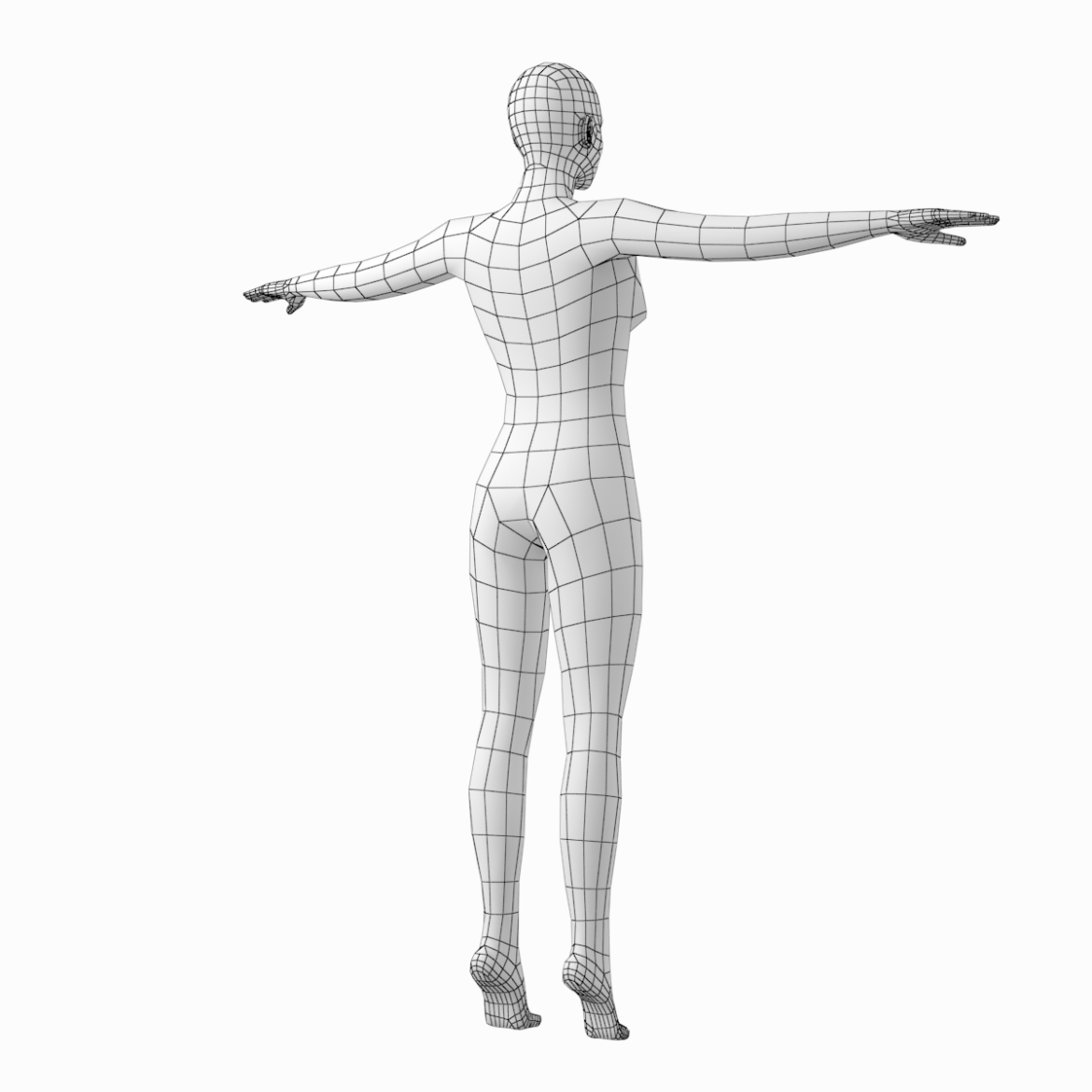 female body on toes base mesh in t-pose 3d model txt 3ds c4d dae dwg dxf fbx max ma mb obj stl png 305211