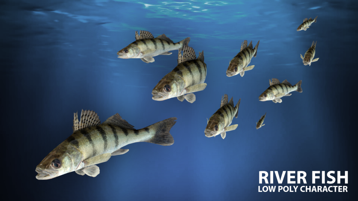river fish lowpoly 3d model fbx 306656