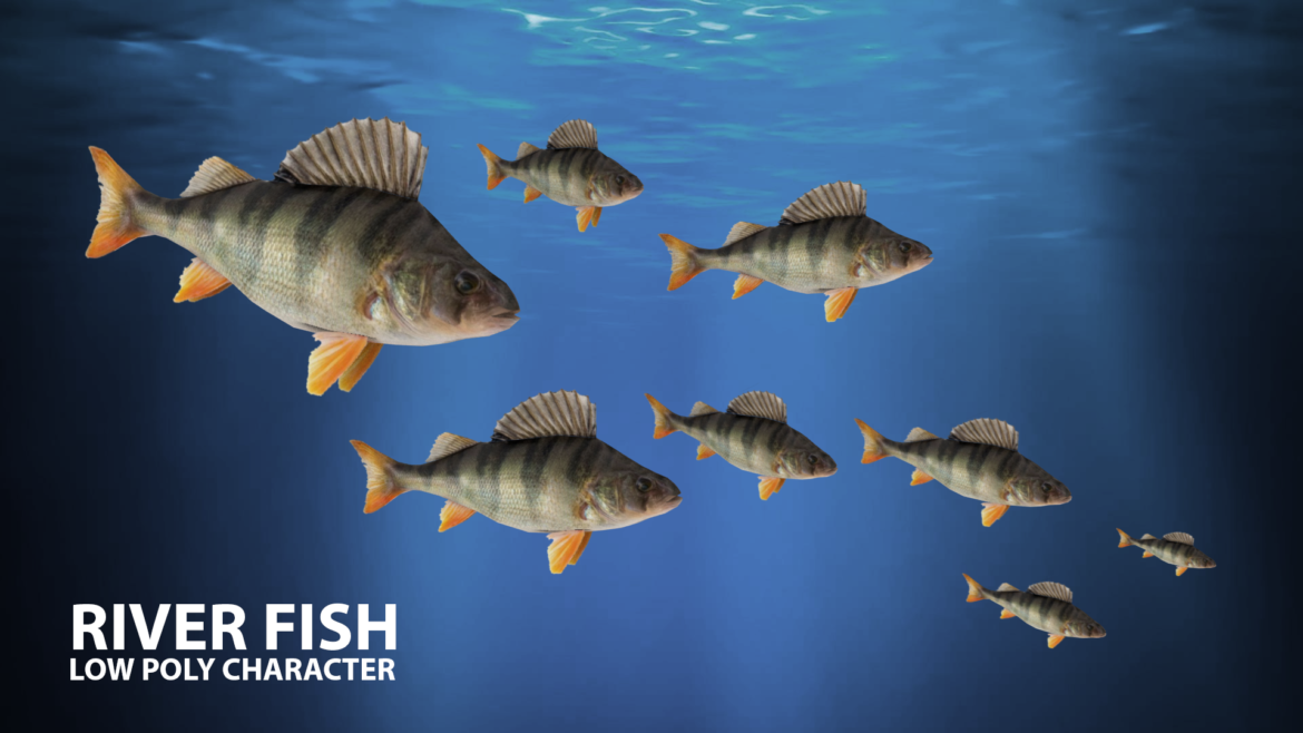 river fish lowpoly 3d model fbx 306661
