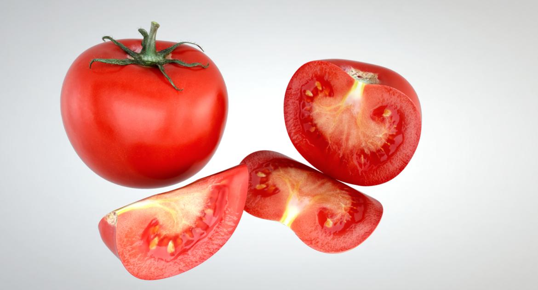 tomato 3d model max lwo obj 320408
