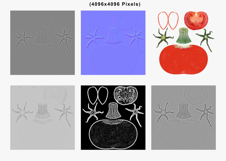 tomato 3d model max lwo obj 320411