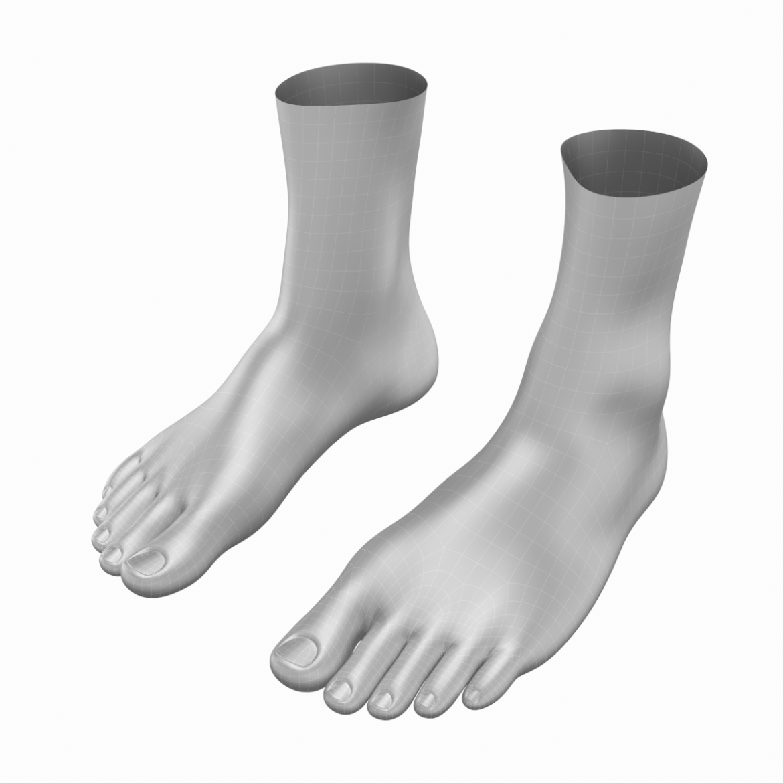 human feet in standing position base mesh 3d model 3ds max dxf dwg fbx blend c4d dae ma mb  obj ztl 320882