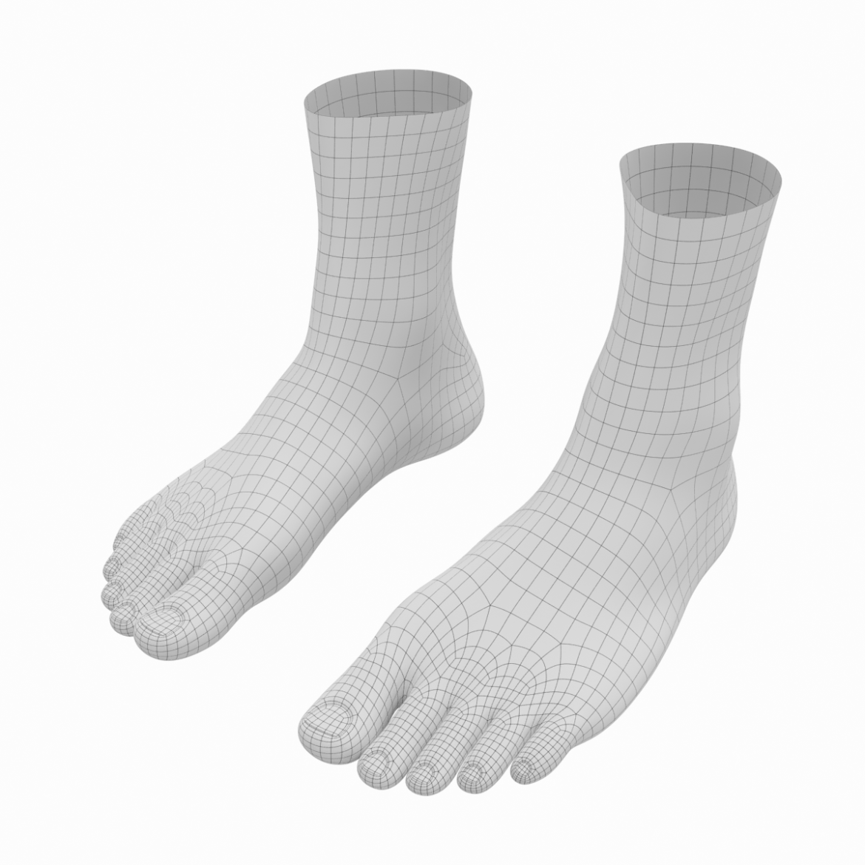 human feet in standing position base mesh 3d model 3ds max dxf dwg fbx blend c4d dae ma mb  obj ztl 320883