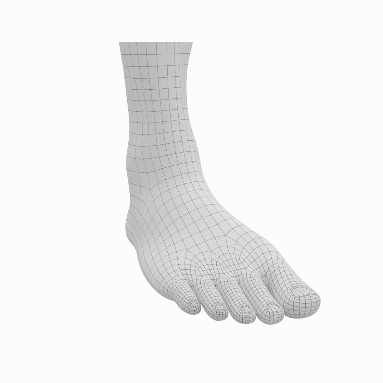 human feet in standing position base mesh 3d model 3ds max dxf dwg fbx blend c4d dae ma mb  obj ztl 320889