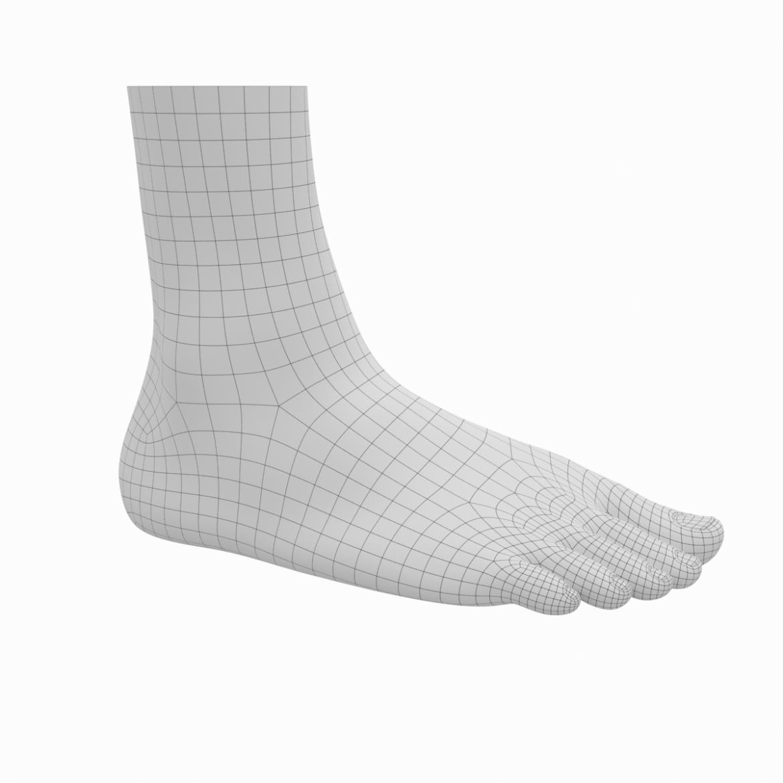 human feet in standing position base mesh 3d model 3ds max dxf dwg fbx blend c4d dae ma mb  obj ztl 320891