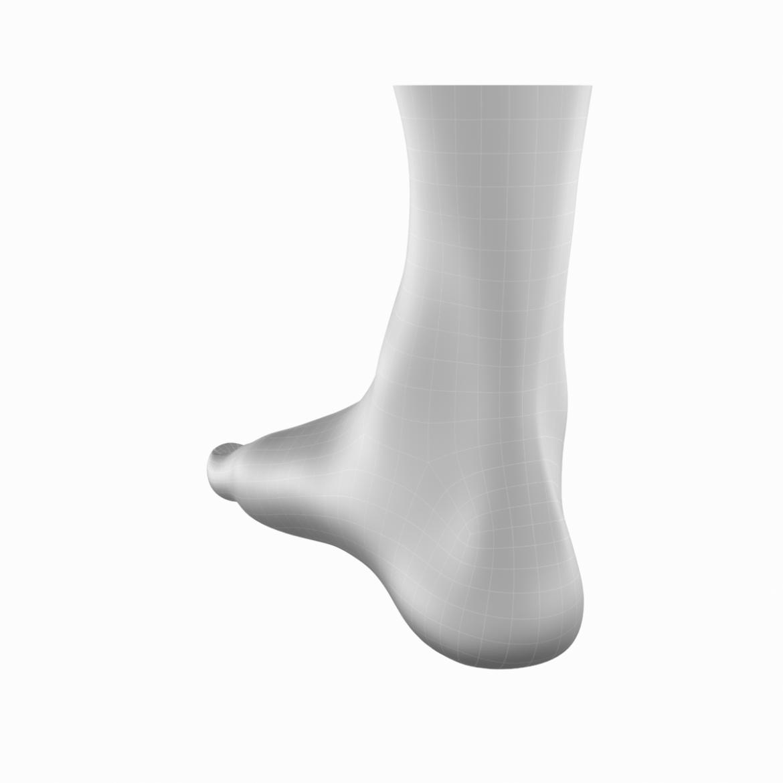 human feet in standing position base mesh 3d model 3ds max dxf dwg fbx blend c4d dae ma mb  obj ztl 320896