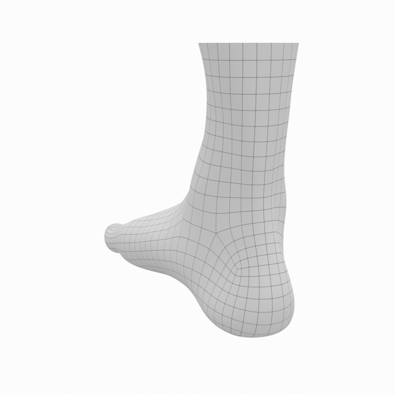 human feet in standing position base mesh 3d model 3ds max dxf dwg fbx blend c4d dae ma mb  obj ztl 320897