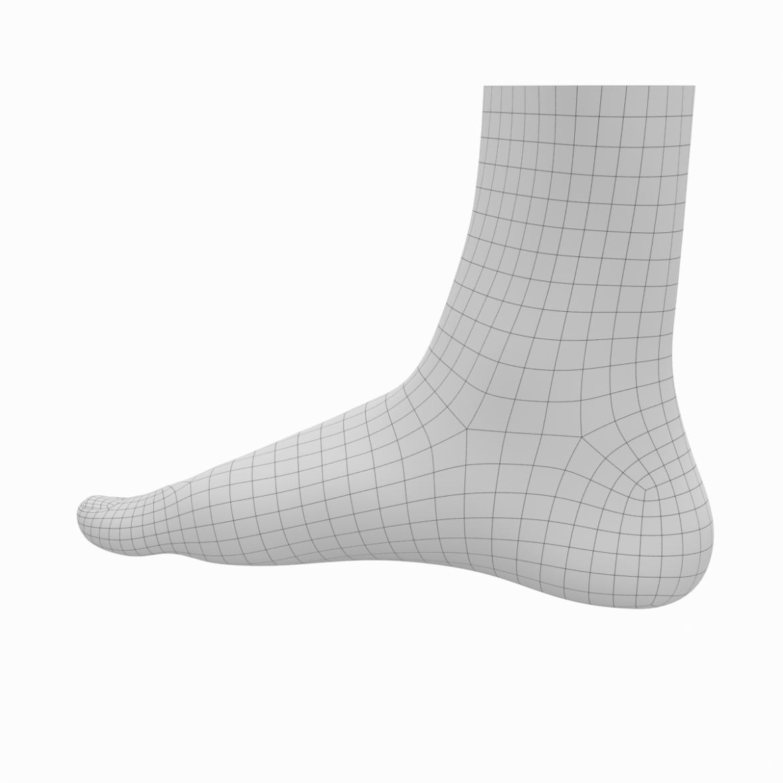 human feet in standing position base mesh 3d model 3ds max dxf dwg fbx blend c4d dae ma mb  obj ztl 320899