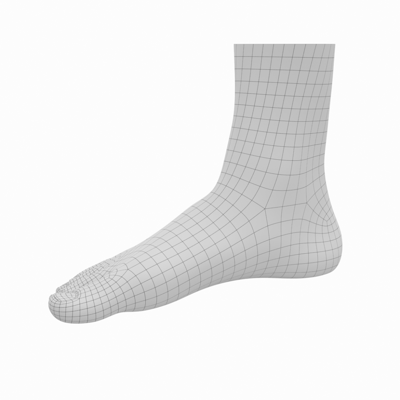 human feet in standing position base mesh 3d model 3ds max dxf dwg fbx blend c4d dae ma mb  obj ztl 320901