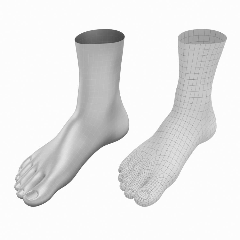 human feet in standing position base mesh 3d model 3ds max dxf dwg fbx blend c4d dae ma mb  obj ztl 320902