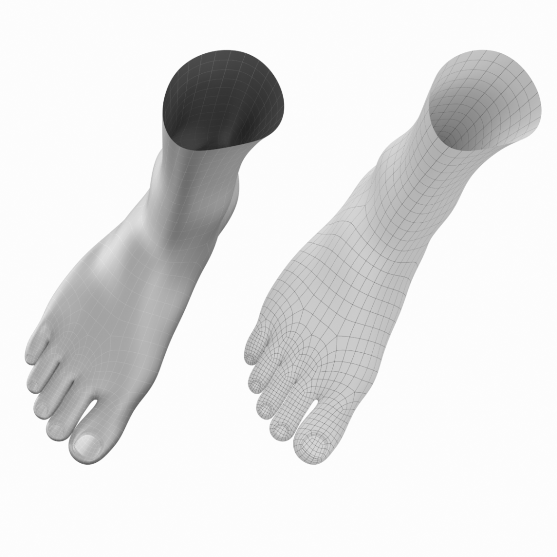 human feet in standing position base mesh 3d model 3ds max dxf dwg fbx blend c4d dae ma mb  obj ztl 320903