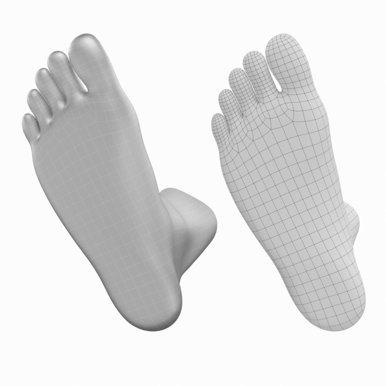 human feet in standing position base mesh 3d model 3ds max dxf dwg fbx blend c4d dae ma mb  obj ztl 320904