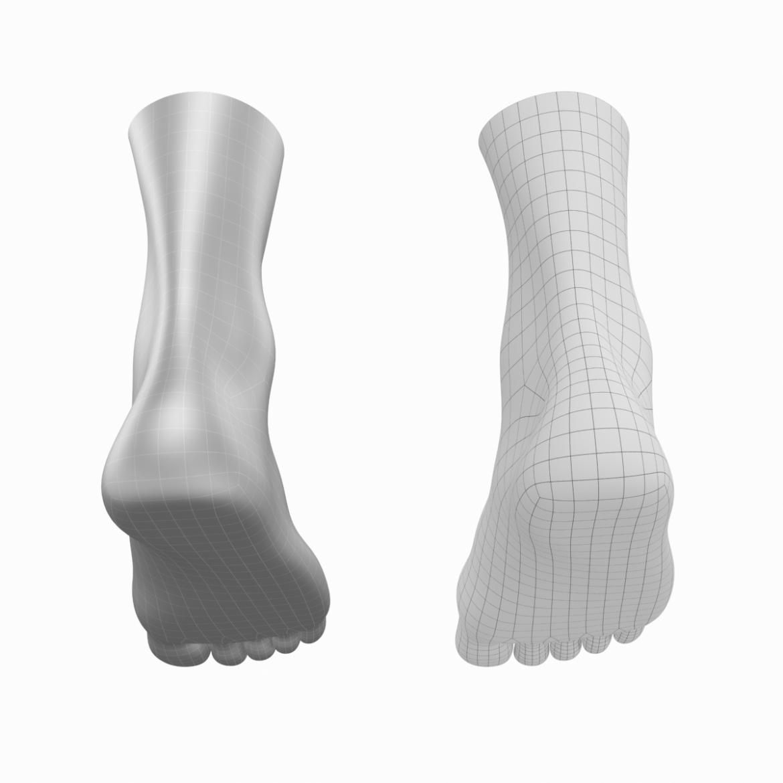 human feet in standing position base mesh 3d model 3ds max dxf dwg fbx blend c4d dae ma mb  obj ztl 320905