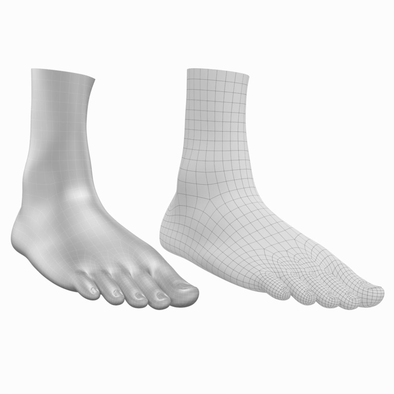 human feet in standing position base mesh 3d model 3ds max dxf dwg fbx blend c4d dae ma mb  obj ztl 320908