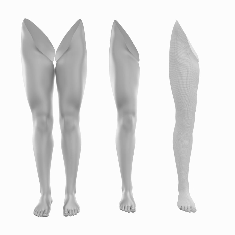 realistic female legs natural proportions 3d model 3ds max fbx blend c4d dae ma mb  obj 320967