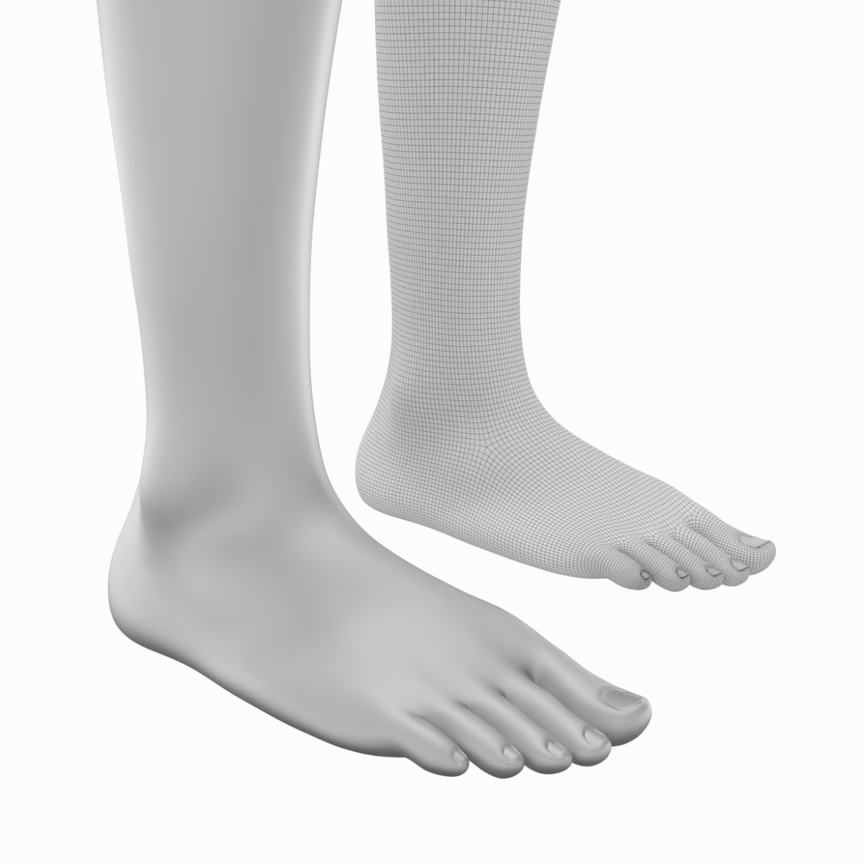realistic female legs natural proportions 3d model 3ds max fbx blend c4d dae ma mb  obj 320975