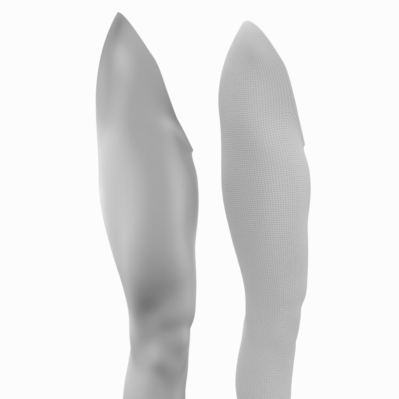 realistic female legs natural proportions 3d model 3ds max fbx blend c4d dae ma mb  obj 320981