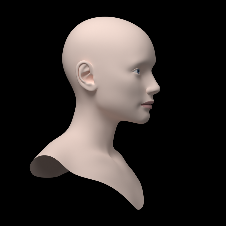 female ideal head base mesh 3d model 3ds max fbx c4d dae ma mb obj 321756