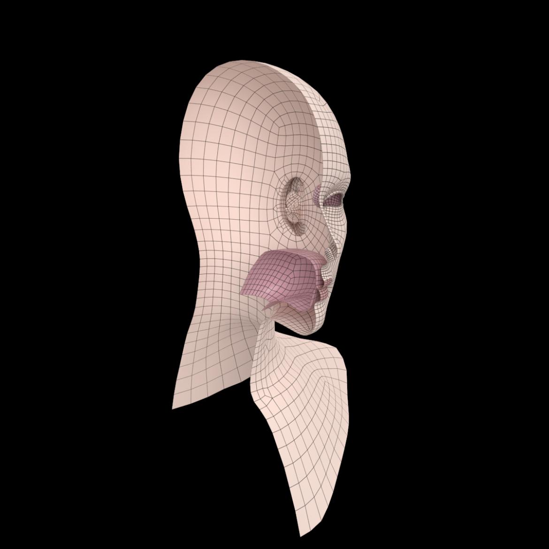 female ideal head base mesh 3d model 3ds max fbx c4d dae ma mb obj 321769