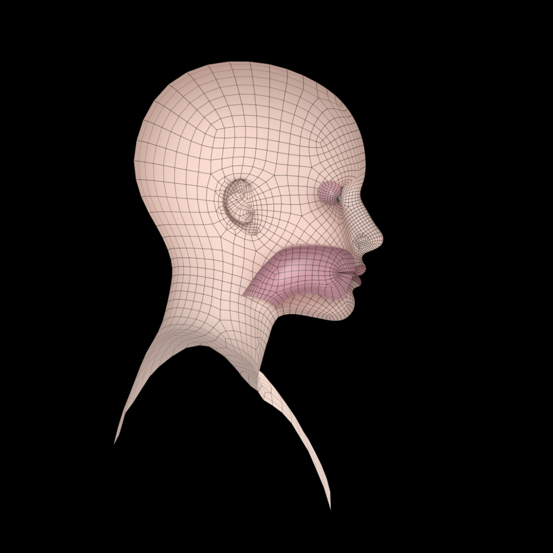 female ideal head base mesh 3d model 3ds max fbx c4d dae ma mb obj 321770