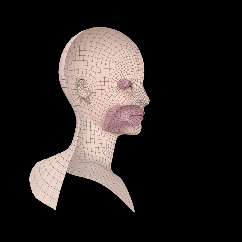 female ideal head base mesh 3d model 3ds max fbx c4d dae ma mb obj 321771