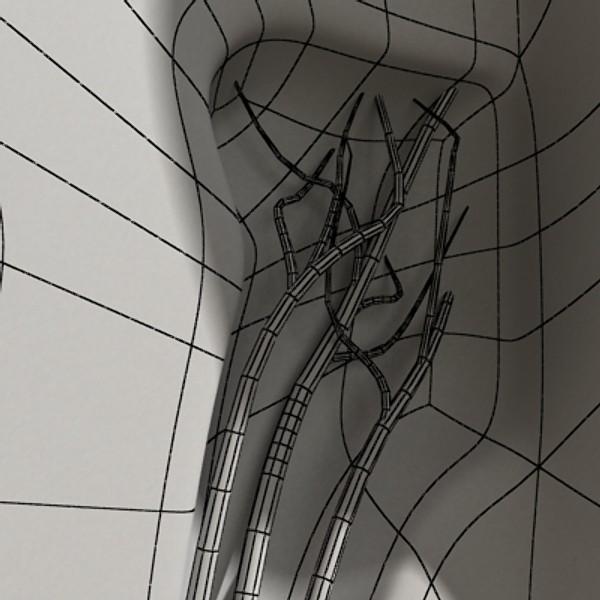 3D Model Tooth Dental Plaque High Detail ( 62.47KB jpg by VKModels )